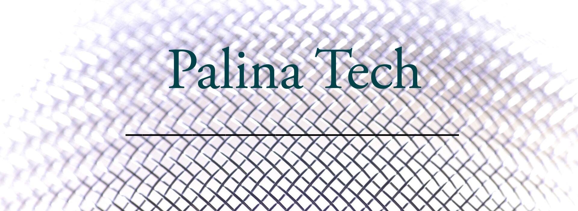 Über Palina Tech